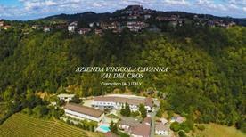 Az. Vinicola Cavanna Eugenio Di Cavanna Giampaolo - >Cremolino