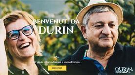 Azienda Agricola Durin  - >Ortovero