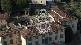Azienda Agricola La Badiola (S.R.L.) - >Capannori