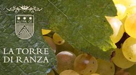 Azienda Agricola La Torre di Ranza s.a.s di Alberto Governa - >San Gimignano