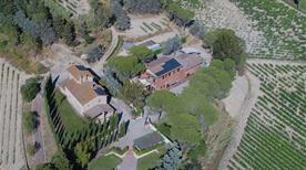 Azienda Agricola Vallorsi Agriturismo - >Terricciola