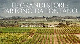 Azienda Vinicola Cherchi SRL - >Usini