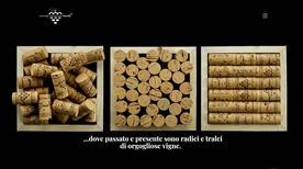 Azienda Vitivinicola Marulli - >Copertino
