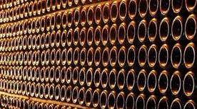 Azienda vitivinicola Vercesi Marco - >Montu'Beccaria