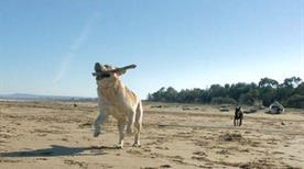 Spiaggia Perelli 1 - >Piombino