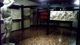 Museo Civico delle Scienze - >Pordenone