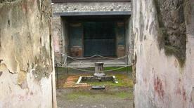 Casa della caccia antica - >Pompei