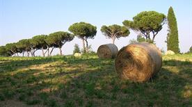 Parco di Vejo - >Rome