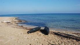 Spiaggia Torre Veneri - >Lecce