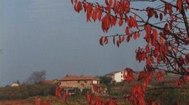 Azienda Agricola Cascina Gramolere - >Monforte d'Alba