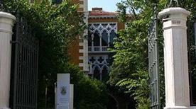Palazzo Cavalli-Franchetti  - >Venezia