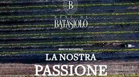 Batasiolo Spa  - >La Morra