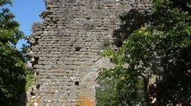 Castello Montedomenichi ruderi - >Cavriglia