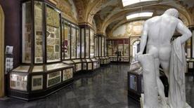 Museo Civico d'Arte - >Modena