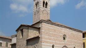 Collegiata di San Salvatore - >Foligno
