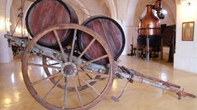 Consorzio Produttori Vini S.c.A.. - >Manduria