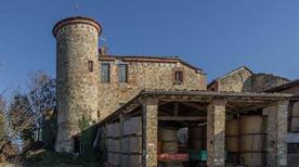 Castello di Monticello - >Gazzola