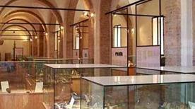 Museo Archeologico - >Cesena