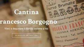 Cantina Borgogno Francesco - >Barolo