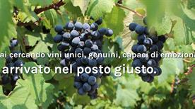 Cantina Carafoli - >Ravarino