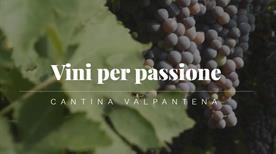 Cantina Sociale Della Valpantena Vini E Spumanti - >Verona