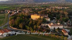 Cantina Tenuta Di Frassineto Srl - >Arezzo