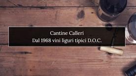 Cantine Calleri  - >Albenga