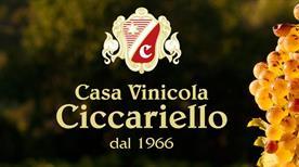 Casa Vinicola Ciccariello S.R.L. - >Rome