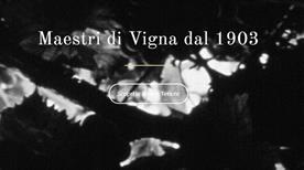 Castellani Spa - >Pontedera