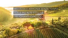 Castello D Albola Societa Agricola Semplice - >Radda in Chianti