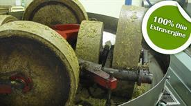 Cooperativa Olearia E Produttori Agricoli Soc.Coop. A R.L. - >Santeramo in Colle