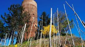 Torre di Montaldo - >Montaldo Roero