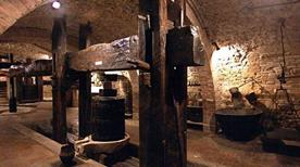 Museo del Vino - >Torgiano