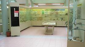 Museo del Territorio - >Riccione