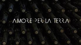 Ditta Babbo Tommaso - >Napoli