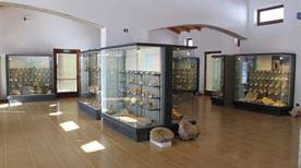Museo Geopaleontologico dei Fossili della Lessinia - >Velo Veronese
