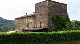 Castello di Badagnano  - >Carpaneto Piacentino