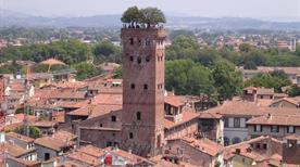 Torre e Palazzo Guinigi - >Lucca