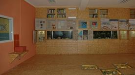 Museo Paleontologico S. Lai - >Ceriale