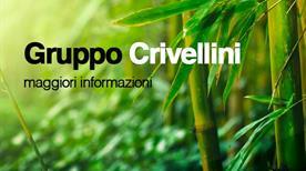 Ecostiense Crivellini Manuela - >Rome