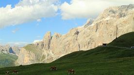 Passo Sella - >Canazei