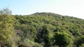Monte Musino - >Sacrofano