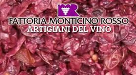 FATTORIA MONTICINO ROSSO - >Imola