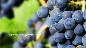Fattorie Azzolino - >Camporeale