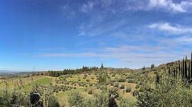 Antico Podere Gagliole - >Castellina in Chianti