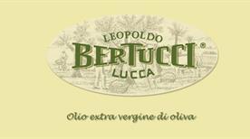 Leopoldo Bertucci S.N.C. Di Giacomo Bertucci & C. - >Lucca