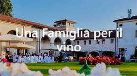 Paladin - Bosco del Merlo - >Annone Veneto