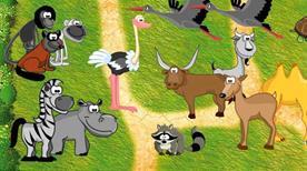 Parco Zoo Falconara - >Falconara Marittima