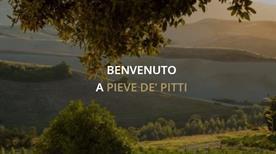 Pieve dè Pitti - >Terricciola