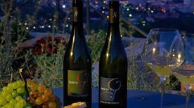 Poggio dei Gorleri S.S. Azienda Agricola - Wine resort - >Diano Marina